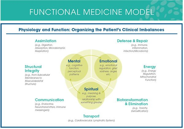 Functional Medicine Model HPHI Lafayette